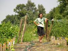 Ildi, Queen of the Eco-Garden